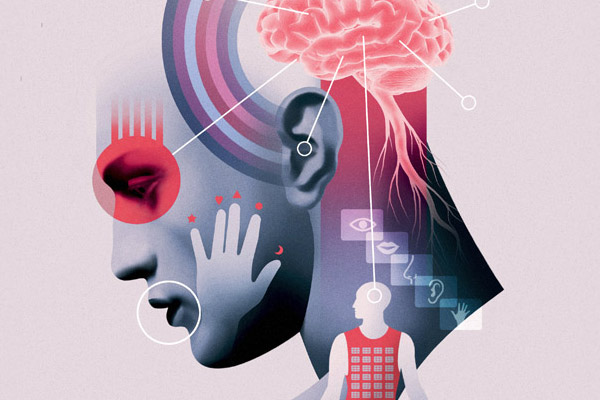 brain012672F713-33DB-4075-229C-0EAD644387C3.jpg