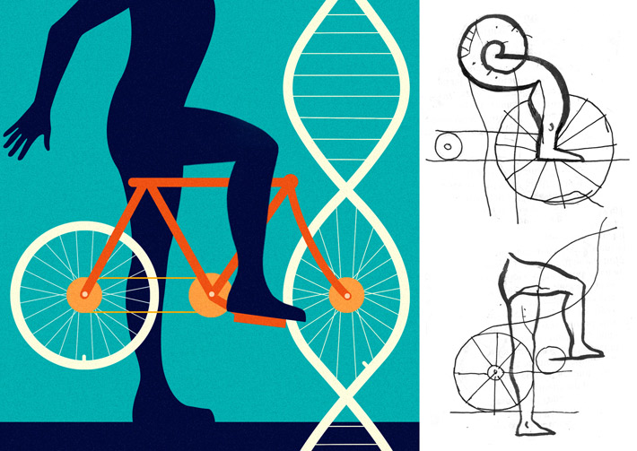 Exercise Enhances Genes